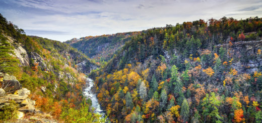5 Of The Top State Parks In Georgia